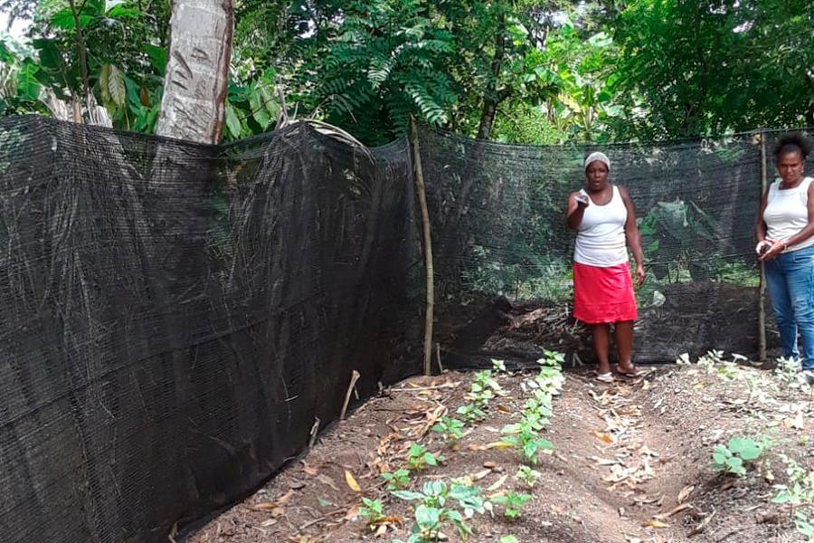 Mujeres por la equidad de género y la economía social y solidaria en el corredor del Caribe
