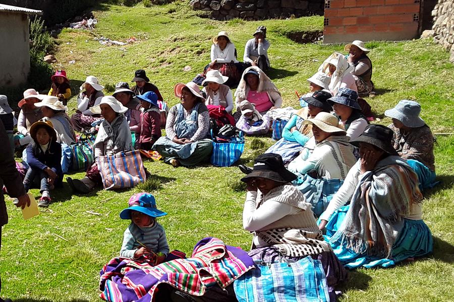 Derechos económicos y a una vida libre de violencia de las mujeres indígenas campesinas en Bolivia